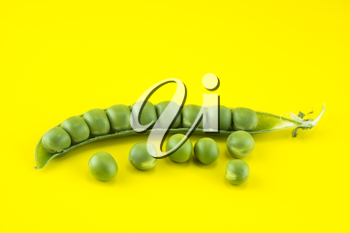 fresh pea fruit on yellow background .