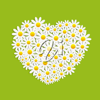 Flora Daisyl Design. Green Background. Vector Illustartion EPS10