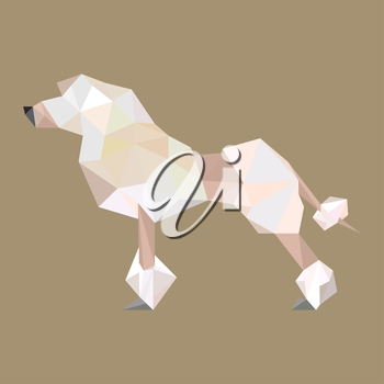 Illustration of origami puddle dog