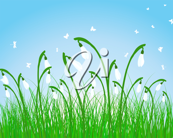 Summer meadow background. EPS 10 vector illustration without transparency.