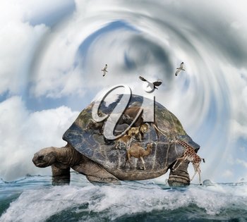 World Turtle Concept Carrying Animals