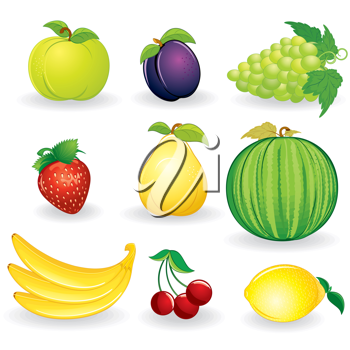 Cartoon Fruits, illustrations isolated on white background