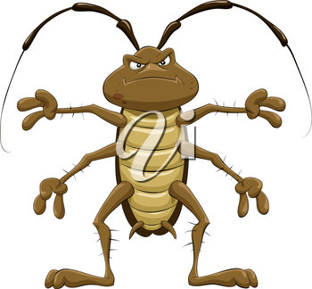 Royalty Free Clipart Image of a Cockroach
